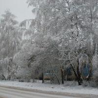 Зима, Людиново