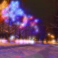 Новый год на Энгельса, Людиново