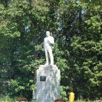 Ленин в Малоярославце, Малоярославец