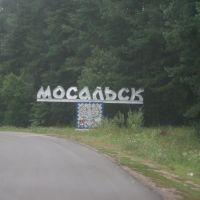 Въезд в Мосальск, Мосальск