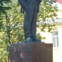 Ленин в Мосальске, Мосальск