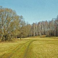 Пейзаж с берёзками у Протвы, Обнинск