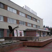 Лебедь у ДК, Обнинск