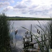 Калужская обл., озеро Бездонное, Перемышль