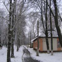 Улица 1, Спас-Деменск