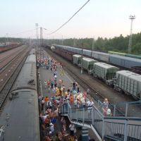 Поезд Москва-Киев на станции Сухиничи., Сухиничи