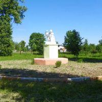 Сухиничи 2011. Городской сад, Сухиничи