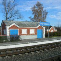 На станции, Ферзиково