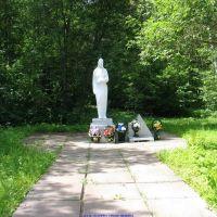 Памятник погибшим воинам в с.Хвастовичи (06.06.2010), Хвастовичи