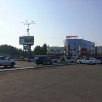 Елизово летом 2012 г., Елизово