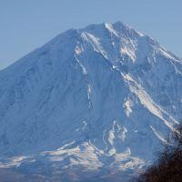 Корякский вулкан. Вид из Елизово, Елизово