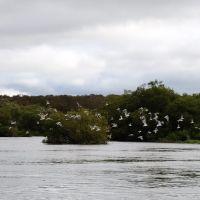 Opala river. Река Опала., Большерецк