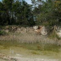 Permanent pond, Кировский