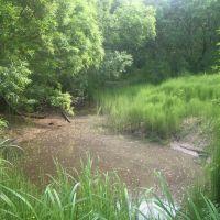 Гдето возле реки Воровская Соболевского района Камчатского края, Кировский