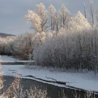 Быстрая не замерзает и зимой, Крапивная