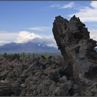 Вулкан Острый Толбачик, Крапивная
