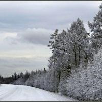 Камчатская зима, Крапивная