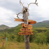 До Москвы 6536 километров, Крапивная