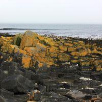 Камни на отливе у острова Беринга, Никольское