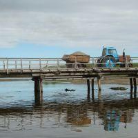 мост через речку Гаванская (the bridge across Gavanskaya river), Никольское