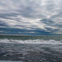 Олюторский залив, Пахачи