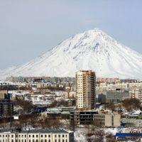 Вид Петропавловска, Петропавловск-Камчатский