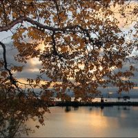 Autumn Curtain, Петропавловск-Камчатский