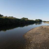 Камчатка р.Большая, Усть-Большерецк