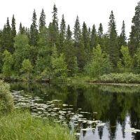 Энгозеро, Амбарный