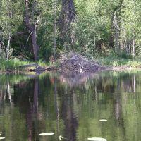 река СУМА, Вирандозеро