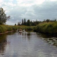 р.Илекса 1980г, Вирандозеро