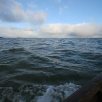 Белое море. Живая вода, Вирандозеро