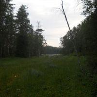 Вид на оз. Верхнее Кайгозеро с речки Кай, Деревянка