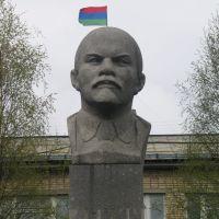Lenin is a Karelian!, Калевала