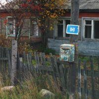 Kestenga,Karelia -2005.     http://www.proza.ru/avtor/maine1, Кестеньга