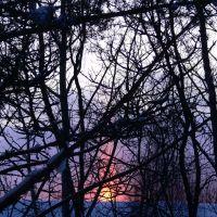 Мартовский закат. 06.03.2010.  18:28., Костомукша