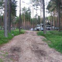 База отдыха, вид с берега, Медвежьегорск