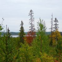 Autumn September 2008, Муезерский