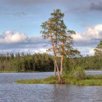 Челгозеро, Муезерский