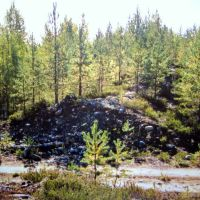 Road cut through Likosärkkä end moraine, Aug 2003, Муезерский