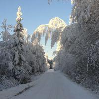 Winter landscape, Муезерский