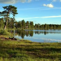 Swimming place of Lake Naarvanjärvi (Ilomantsi, 20120720), Муезерский