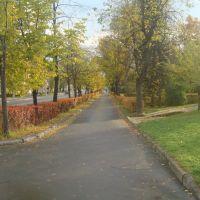 Аллея, Петрозаводск