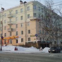 Резиденция В,Жириновского, Петрозаводск