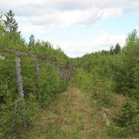 Старые пограничные столбы, Софпорог