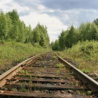 Железная дорога в посёлок Пяозёрский, Софпорог