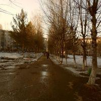 АЛЛЕЙКА, Березовский