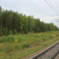3650-й км Транссиба..., Ижморский