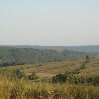 Тайга, Калтан