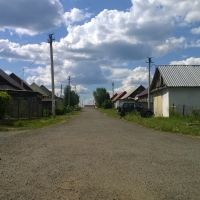 Улочка, Кедровка
